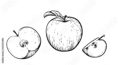 Foto Engraved vector illustration of an apples with apple half and apple leaf