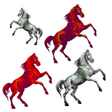 Silver And Red Horses Standin...
