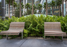 Benches In A City Park
