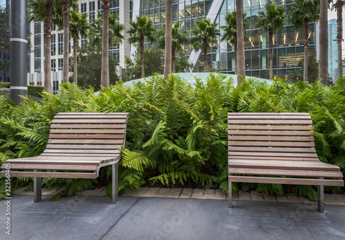 Benches in a city park Canvas Print
