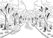 Park Graphic Black White Lands...