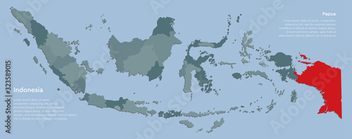 Cuadros en Lienzo Country Indonesia map with islands province Papua