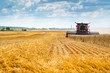 canvas print picture - Red combine harvester in a wheat field. The farmer is harvesting.