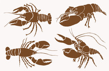 Graphical Collection Of Lobsters , Sepia Background, Vector Vintage Illustration