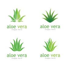 Aloe Vera Cosmetic Herbal Vect...