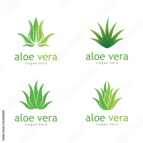 Photo Aloe vera cosmetic herbal vector icon