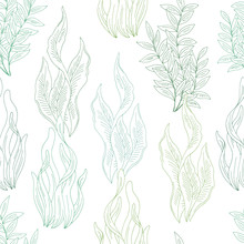 Seaweed Graphic Color Seamless...
