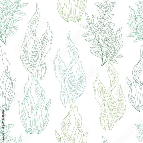 Canvastavla Seaweed graphic color seamless pattern background sketch illustration vector