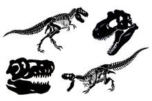 Graphical Set Of Dinosaur Skel...