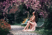 Romantic Girl Sits On A Bench ...