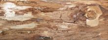 Grobe Braune Holzstruktur Der ...
