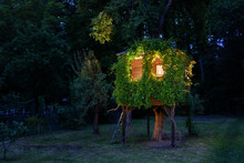 Playhouse On Tree In Dense Thickets Of Wild Grapes In Evening Summer Garden Glowing From The Inside. Wooden Treehouse, House On Tree