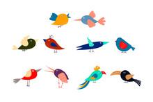 Cute Cartoon Multicolored Bird...