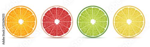 Fototapeta Four slices of citrus on a white background. Highly realistic illustration. obraz