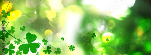 Beautiful clover leaves on blurred green background. St Patrick's day - 323699473