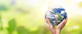 Earth globe in family hands. World environment day