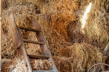 Haystack And Ladder In The Old...