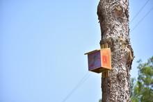 Wooden Birdhouse For Birds On ...