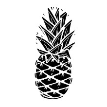 Exotic Summer Pineapple Black And White Silhouette Illustration