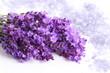 Lavender and salt.
