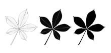 Vector Set Of Chestnut Leaves,...