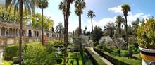 Garden Of Real Alcazar Gardens...