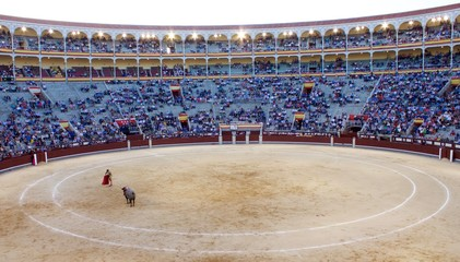 Bull Fighting Madrid Spain San Isidro