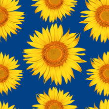 Seamless Pattern Botanical Sunflower Flowers Abstract Classic Blue Backgground.Vector Illustration Drawing .For Used Wallpaper Design,textile Fabric Or Wrapping Paper.