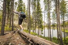 Hiker Balancing On Log While H...