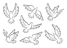Flying Dove Sketch Vector Set. Pigeons Set Peace And Love Symbols. Dove With Olive Branch Christian Religious Symbol.  Collection Of Flying And Soaring Bird Logos. Isolated. Vector Illustration