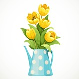 Fototapeta Tulipany - Bouquet of yellow tulips in a tall blue polka-dot jug with a thin nose isolated on white background
