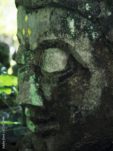タイ、チェンマイ のワット・ウーモン。トンネルの中で僧侶の厳しい修行寺として有名です。    境                          内  には他 Canvas Print
