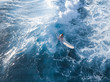canvas print picture Aerial view of the girl surfer riding the ocean wave on the longboard