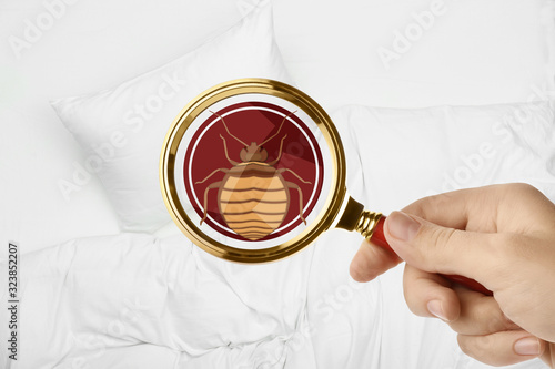 Woman with magnifying glass detecting bed bug, closeup Fototapet