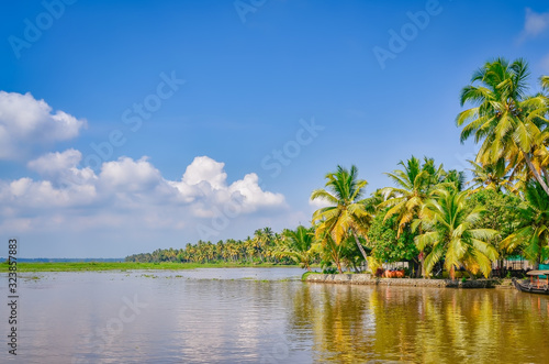 Photo Scenery of Coconut Trees, Backwaters and a clear blue sky