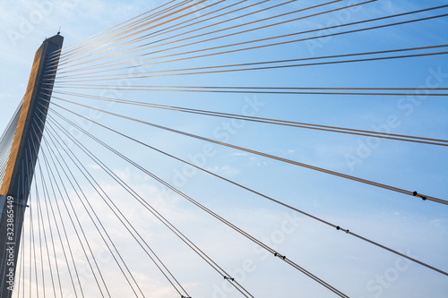 Fotografie, Obraz cable stayed bridge closeup in early morning