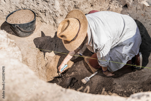 Archaeologist Uncovering Artifacts Remains Wallpaper Mural