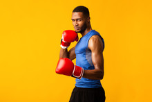 Confident Afro Fighter Demonstrating Classical Boxing Stance