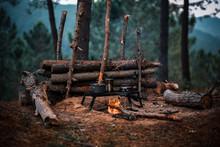Primitive Bushcraft Survival D...