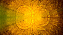 Abstract Background. Main Colo...