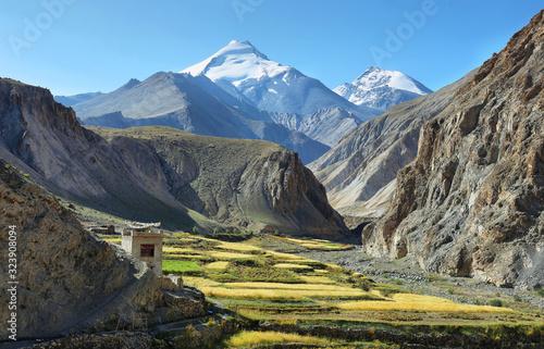 Fototapeta Green valley along Markha valley trek with Kang Yatse peak at background, Ladakh, India obraz
