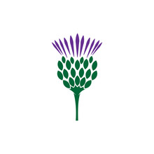 Scottish Thistle Flower Logo I...