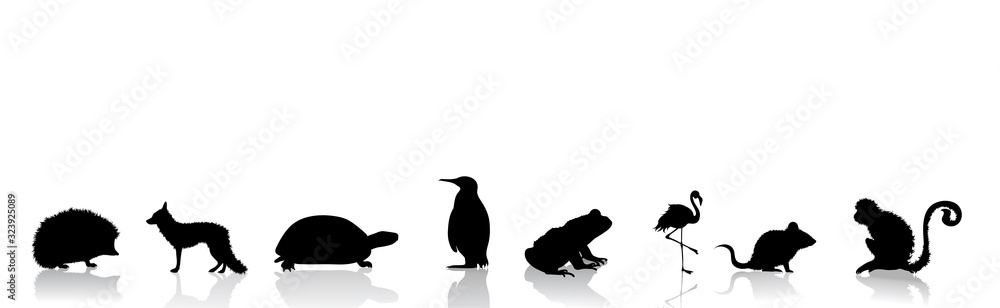Fototapeta Vector silhouette of collection of wild animals on white background. Symbol of nature.