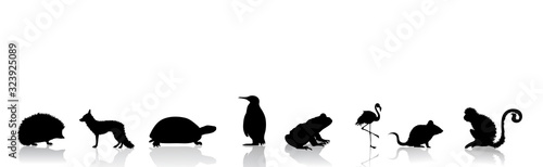 Vector silhouette of collection of wild animals on white background. Symbol of nature.