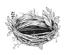 Illustration Of A Bird's Nest....