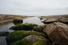 Rocks In The Seashore Covered ...