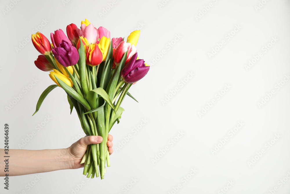 Fotografie, Obraz Woman holding beautiful spring tulips on white background, closeup