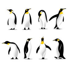 Cute Penguins Set Logo