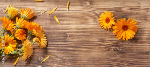 Obraz calendula flowers on dark wooden background - fototapety do salonu