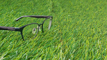 Black Glasses Lie On The Grass...